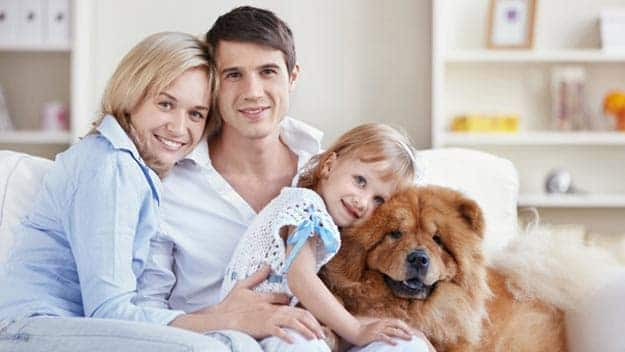 Wills & Trusts dog-young-family Direct Wills Chingford Hatch